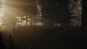 The Forest image 8