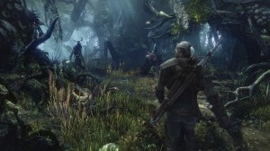 Witcher Wild Hunt image 7